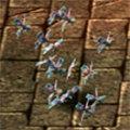 Moth Cluster