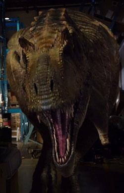 Primeval New World Albertosaurus Albertosaurus - Primev...